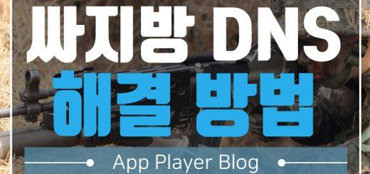 싸지방 DNS